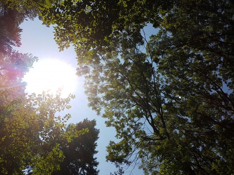 Горещините продължават – до четвъртък парещо слънце и градусите до 34