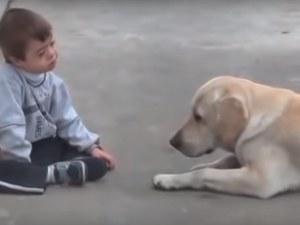 Лабрадор се сприятели с детенце със синдром на Даун
