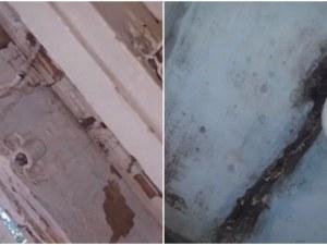 Болницата в Карлово – затвор! Пациенти се оплакват от мизерия и грубо отношение
