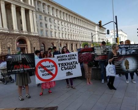 Флашмоб под прозорците на властта: Забранете фермите за животински кожи!