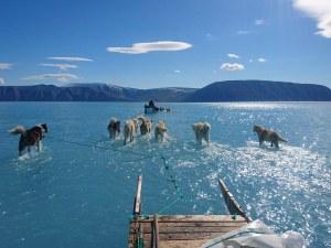 Топенето на ледовете в Гренландия запечатано в спиращ дъха кадър