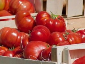 В Гърция български домати на пазара няма! Вносът у нас кръжи около 90%