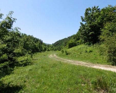 Откриха 77-годишен мъж, оцелял 5 дни сам в Еленския балкан без храна