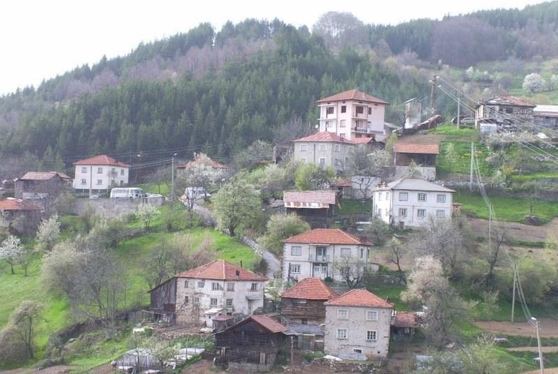 Алпинисти издирват изчезналата възрастна жена в Родопите