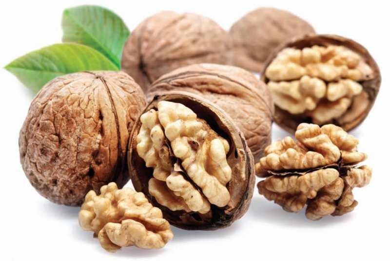 Редовната консумация на орехите подобрява ли здравето ни