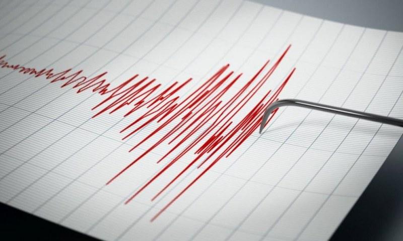 7,1 по Рихтер разлюля Калифорния, няма данни за пострадали българи