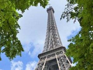 Създават гори срещу жегата в Париж