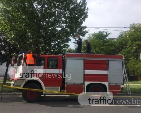 Голям пожар изпепели десетки декари край Хасково, застраши къщи