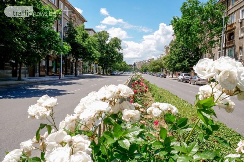 ВНИМАНИЕ: Опасна жега в 21 области на България!
