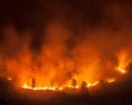 77-годишен мъж е причинил огромния пожар край Хасково