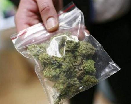 Спипаха наркодилър с марихуана за 10 бона