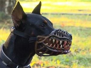 Обрат: Намордници за всички кучета няма да има