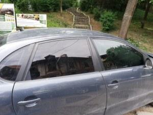 Коли газят животни на Бунарджика – докога автомобили ще могат да обикалят тепето?
