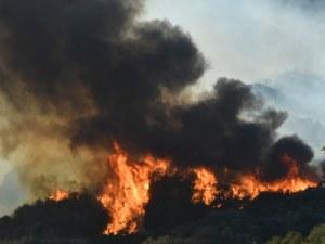 Мощен пожар бушува на полуостров Пелопонес