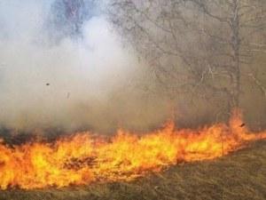 Евакуират 10 000 души от хърватски остров заради голям пожар