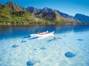 Туристи умират мистериозно в Доминика, след като пият странна на вкус лимонада