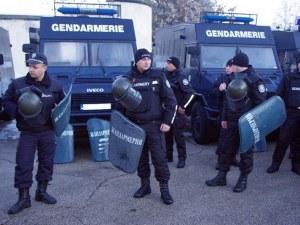 Хвърлят войска, жандармерия и ловци срещу чумата по прасетата