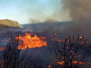 Голям пожар пълзи към къщи и хора на 50 км от Атина