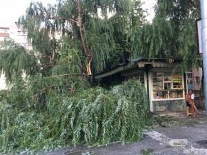 Гръм падна в Пловдив