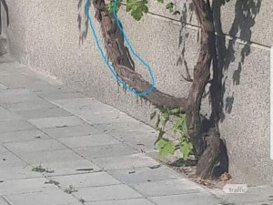 Смок изпълзя от блок в центъра на Пловдив, хората са в паника