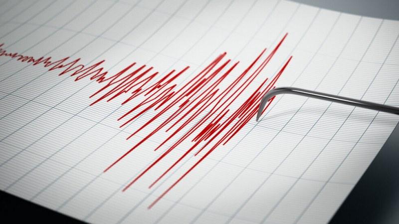 Земетресение разлюля Япония