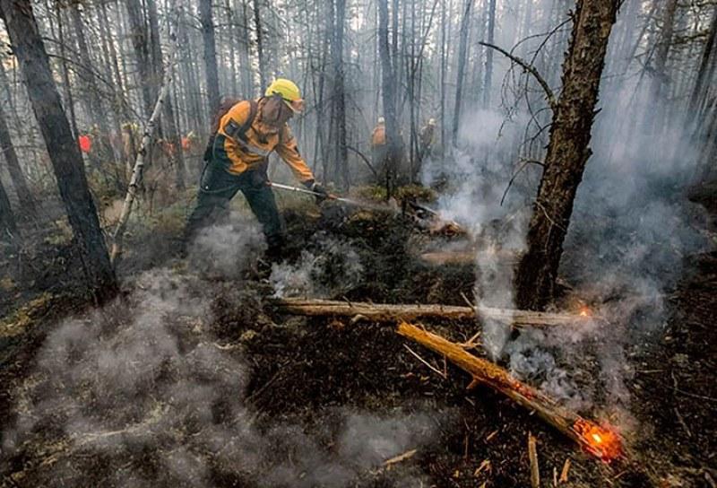 Пожари колкото Белгия връхлетяха Сибир, Путин хвърля армията