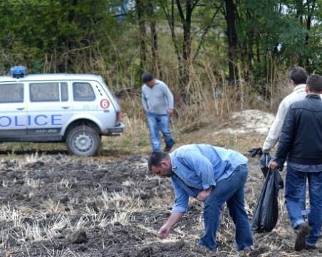Зловеща находка след масовото клане: Откриха трупове на домашни прасета захвърлени в дере