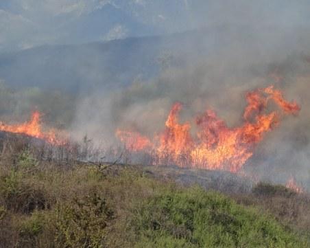 Голям пожар избухна в Хасковско