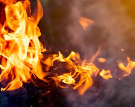 Пожар обхвана дупнишко село, пламна смесена гора