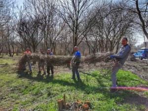 Доброволци засаждат 10 000 минзухара в Ботаническата градина в Пловдив