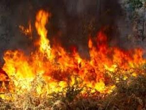Жегата може да запали 8 области днес, най-опасно е в Пиринско