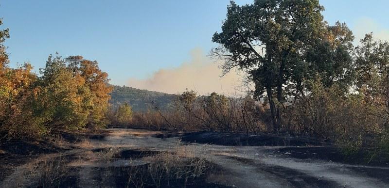 Психично болен мъж е заподозрян за големия пожар в Хасково