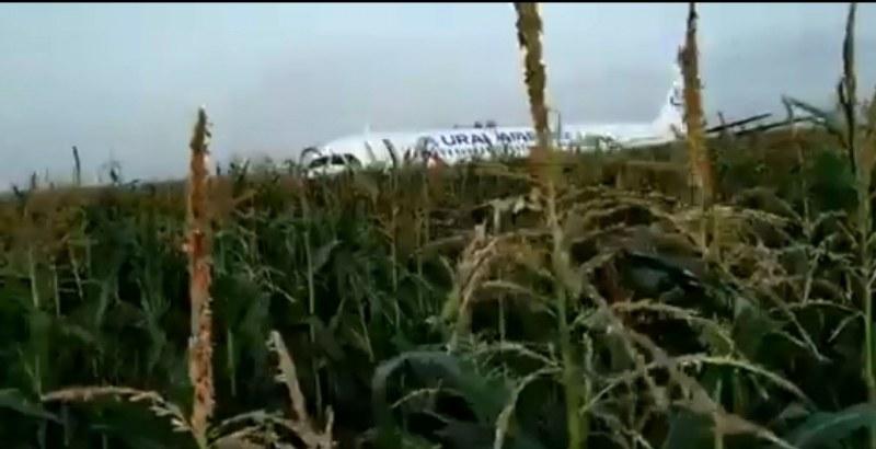 Руски самолет кацна аварийно в нива, 23 души пострадаха