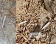 Мизерия! Спринцовки и счупени бутилки крият опасност за пловдивчани на Бунарджика