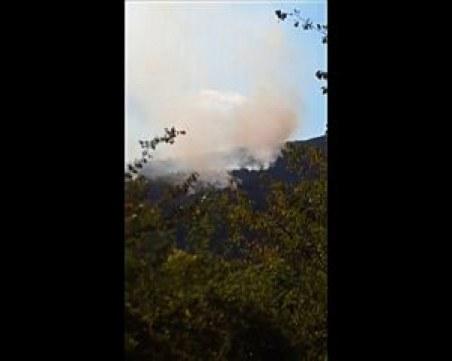 Две вили са изгорели при пожара в Софийско