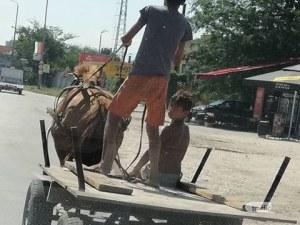 На косъм от произшествие: Каруца изскочи пред автомобил на входа на Пловдив