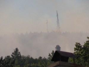 Овладяха пожара край Реброво, екипи следят обстановката