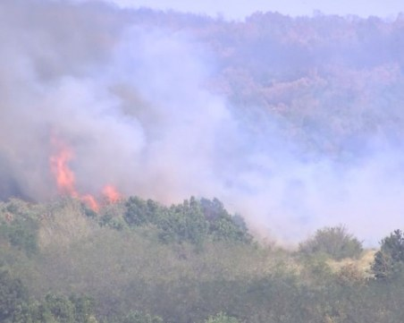 Близо 100 души гасят огненото бедствие до Ветрен