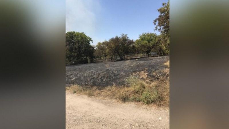 Голям пожар бушува край двореца