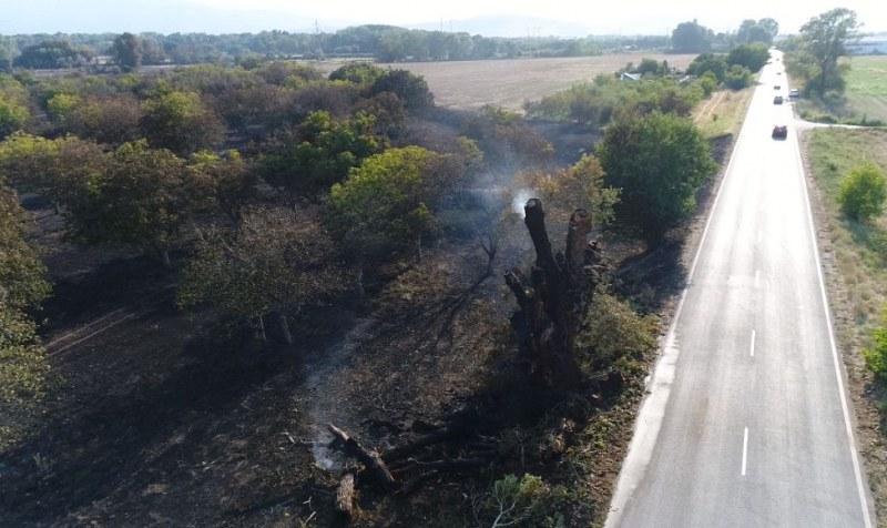 Кадри с ДРОН показват размера на пожара край Кричим
