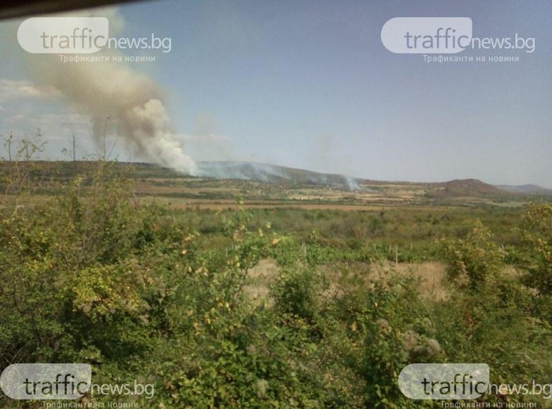 Пожар избухна на сметище в Пазарджишко, огънят тръгна и към гората