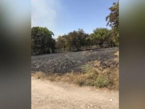 Голям пожар бушува край двореца в Кричим