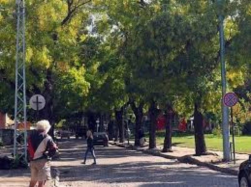 """Затварят улица """"Даме Груев"""" в Пловдив за ремонт, но не този, който всички очакват"""