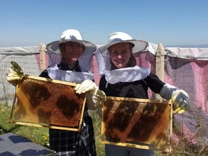 Ученици добиват мед край София