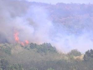 Обявиха екстремален индекс за пожари в 17 области у нас