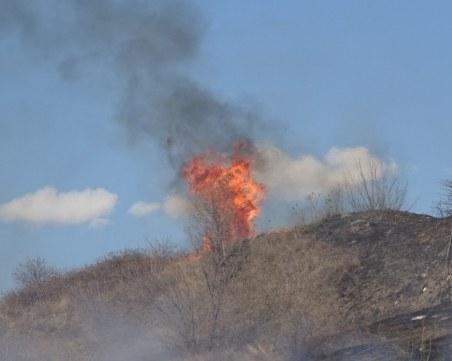 Откриха тялото на възрастен мъж в обгорели площи в Разградско