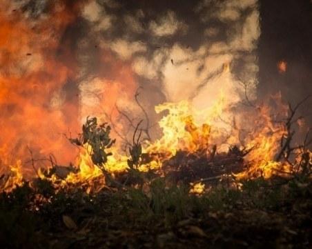 Пожарът край Девин е унищожил 70 дка гора