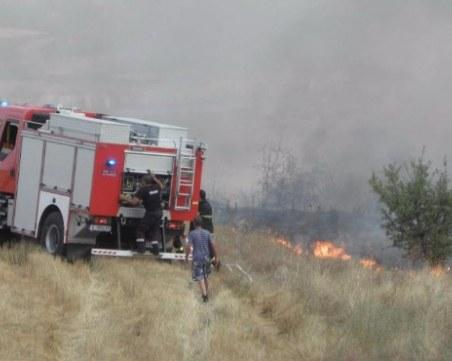 Големият пожар край Нова Загора е овладян, над 500 декара гори са унищожени