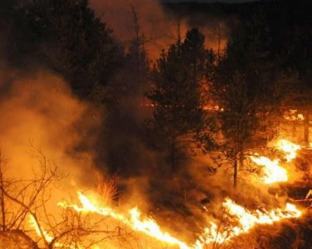 Локализираха огромния пожар край Сливен, засегнал 1500 дка гори и 700 дка ниви
