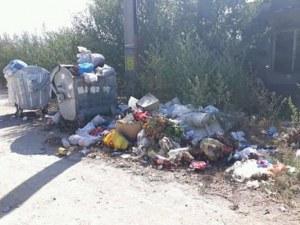 Пловдивско село потъна в боклук! Местни: Не са изпразвали контейнерите от седмици